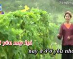 Hoa thơm bướm lượn – Karaoke tách lời – Lương Thu Hồng